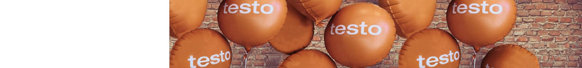 Testo <strong>Exhibitions and Events</strong>