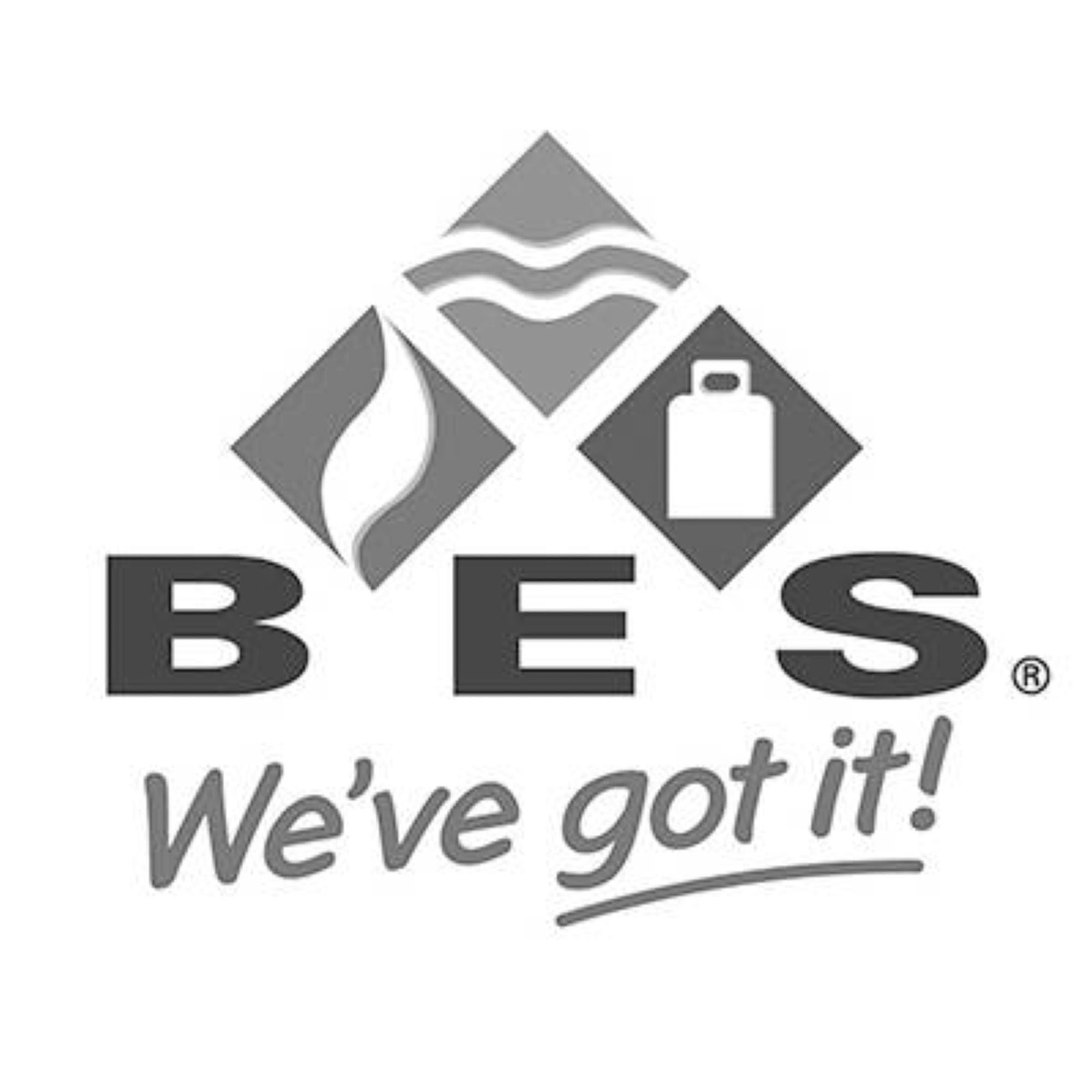 BES Deeplinks Logo.jpg
