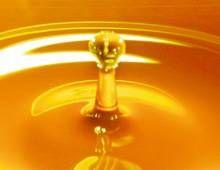 Guia sobre aceite