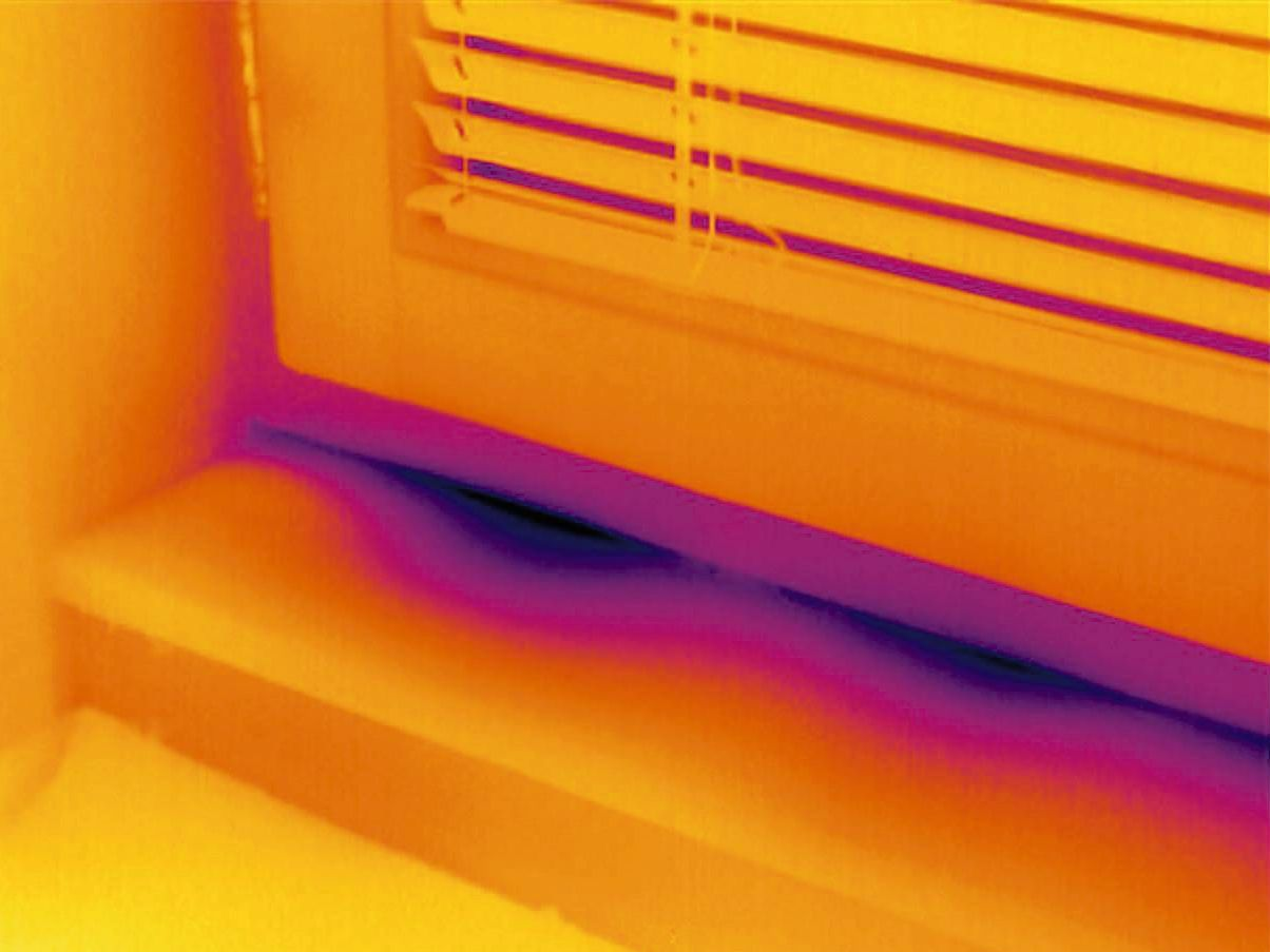 Thermal image door