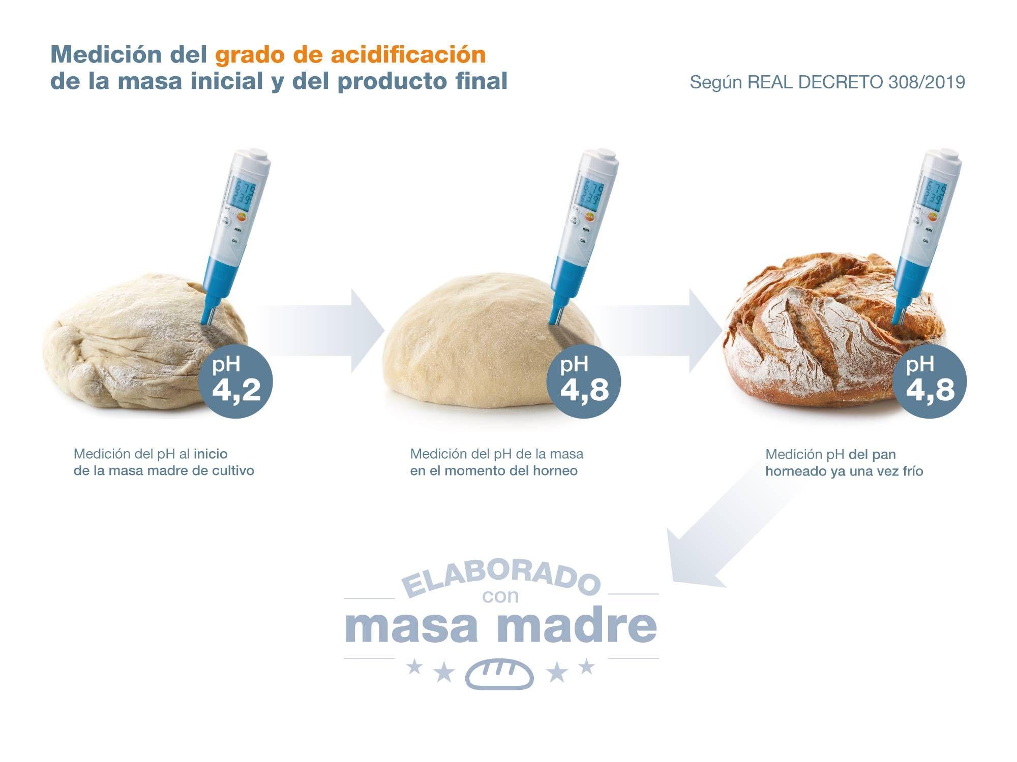 infografia_masa_madre_2000x1500.jpg
