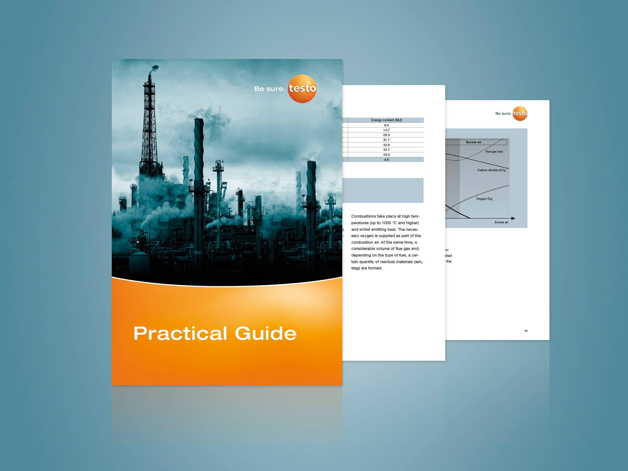 Practical Guide for Industrial Flue Gas Analysis