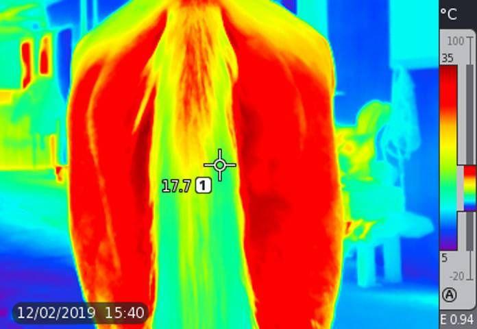Cavallo-posteriore-termografia.JPG