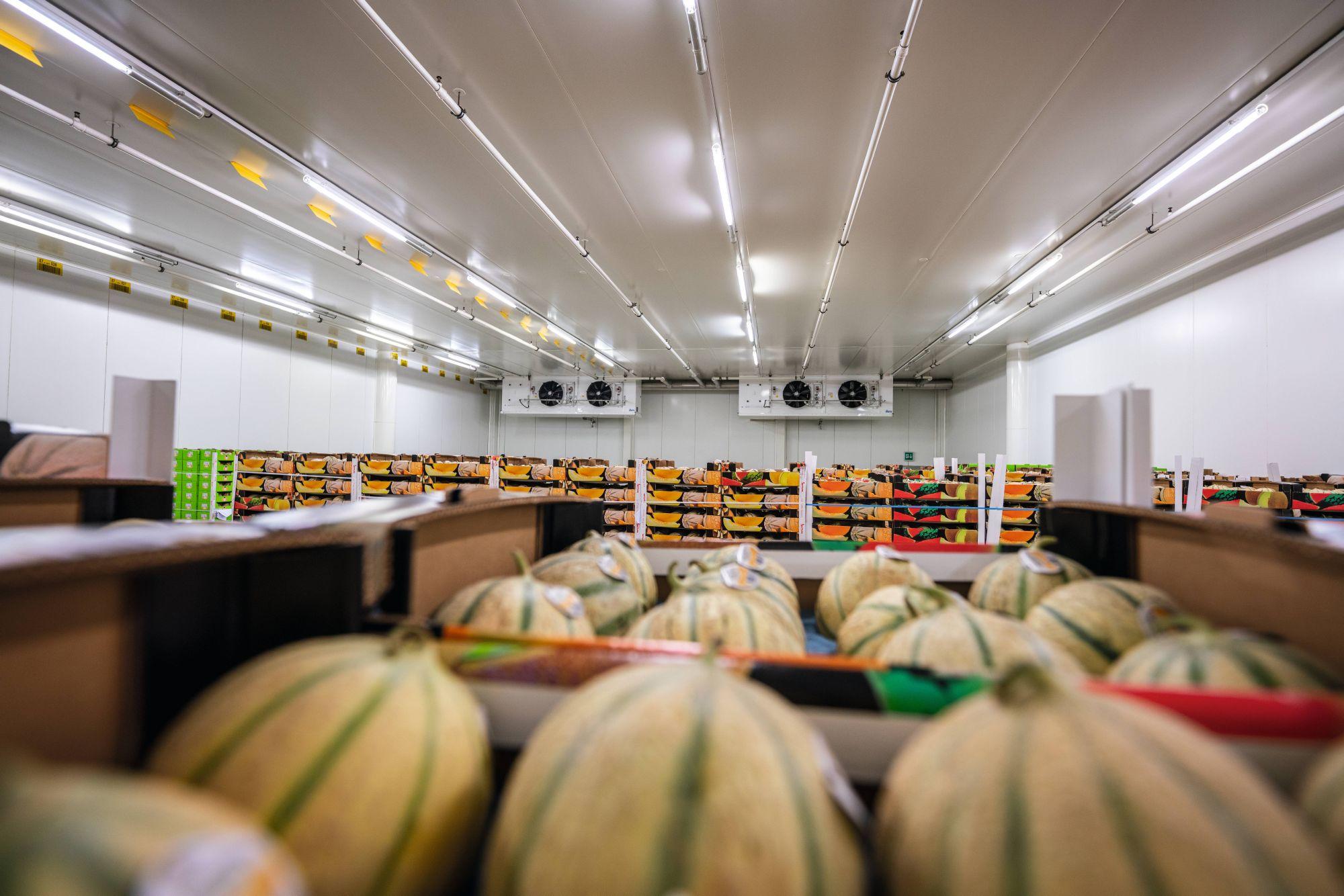Solution-Application-Food-Distribution-Centers-27.jpg