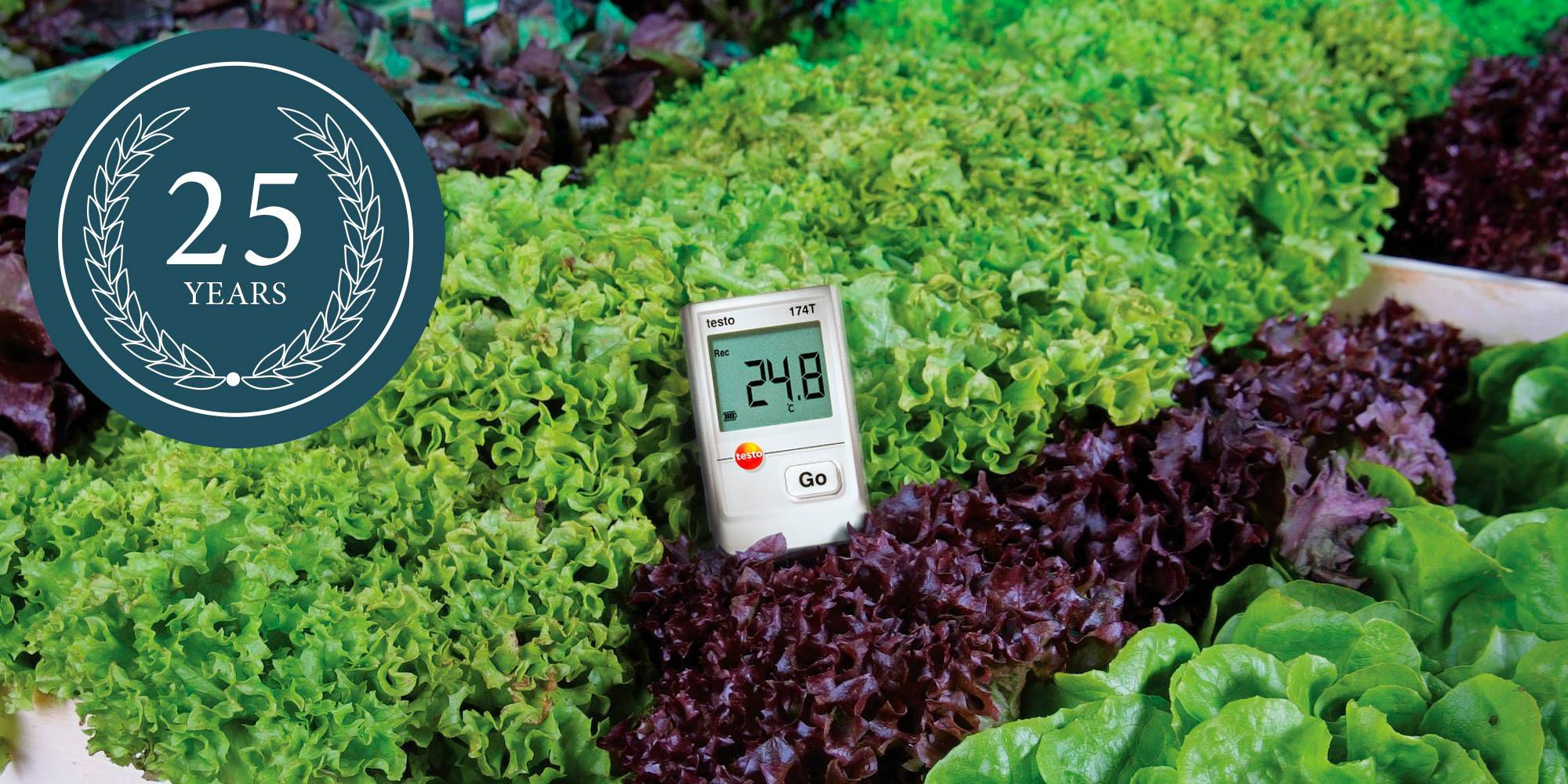 Testo data logger monitors temperatures in a refrigerated chest with fish