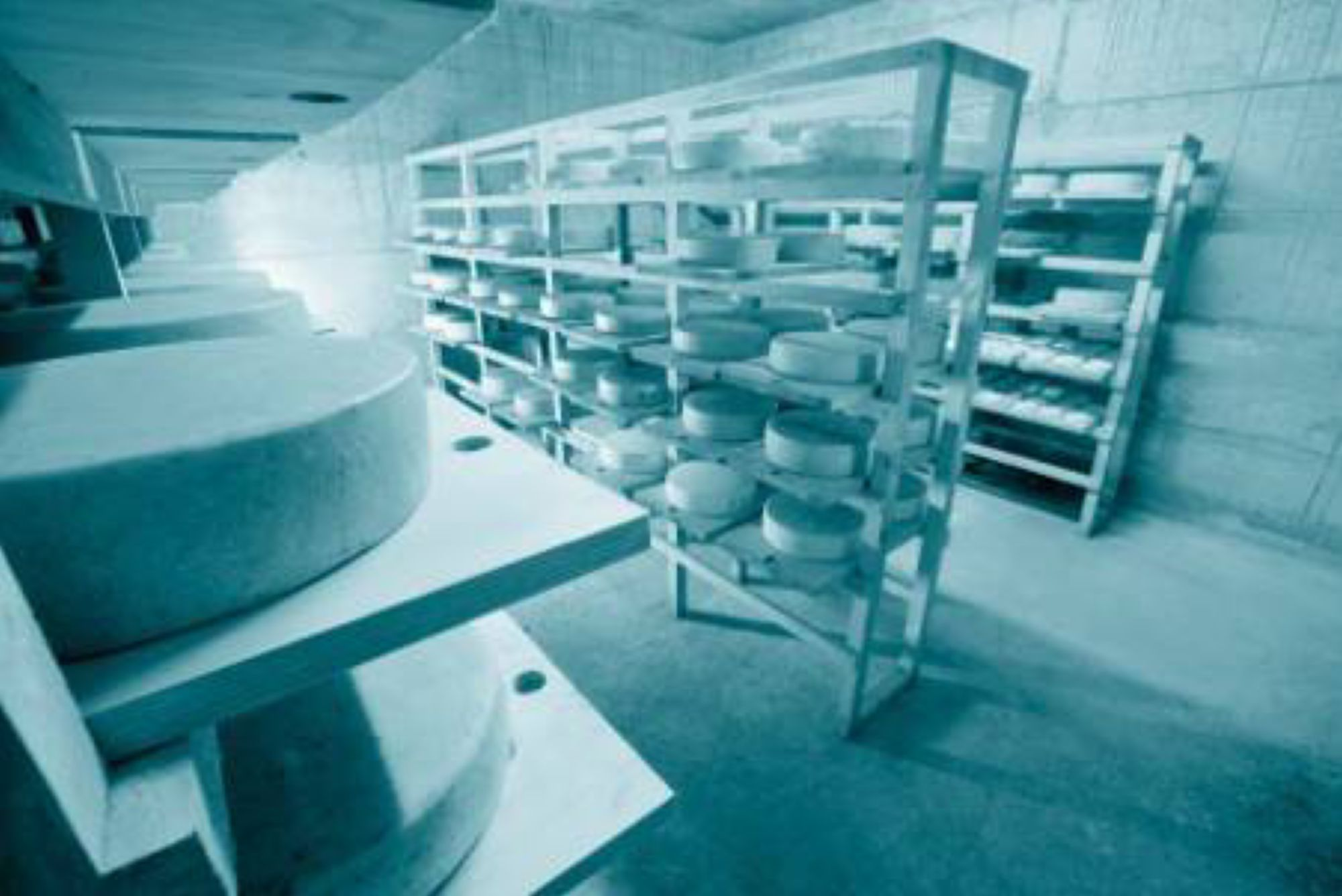 Production, stockage et transport avec la solution testo Saveris