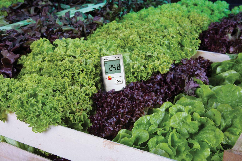 Mini-enregistreur de données pour la température