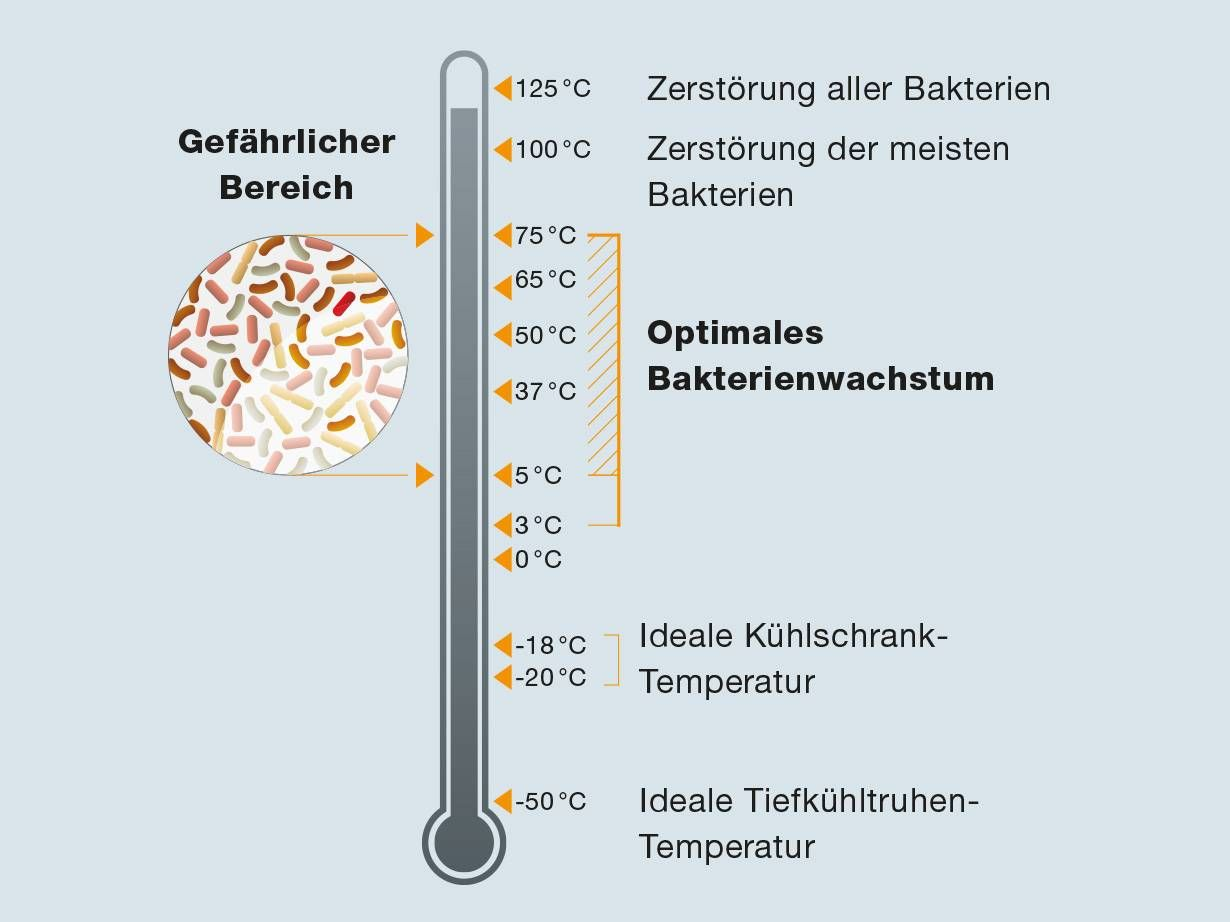 Temperaturen Keimentwicklung