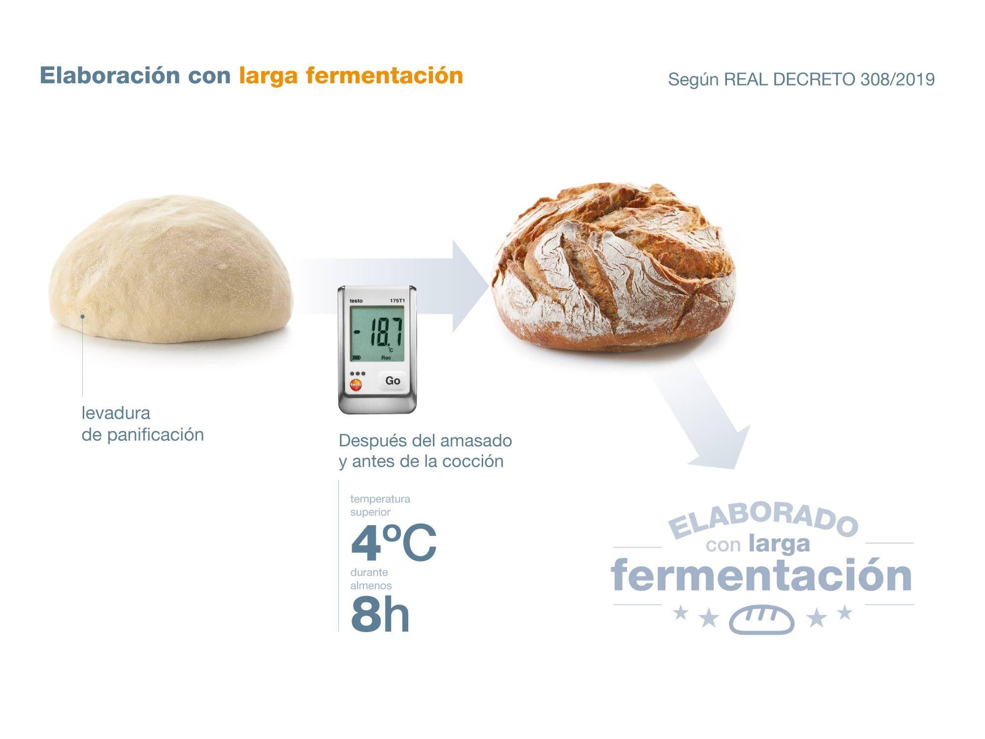 infografia_larga_fermentacion_2000x1500.jpg
